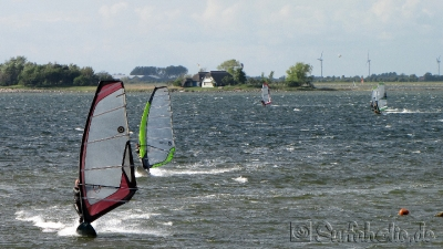 Fehmarn, windsurfen in Gold