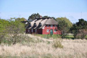 Rømø, Reetdach-Ferienhaus