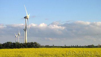 Fehmarn, Windkraft ist hier lukrativ. :-)