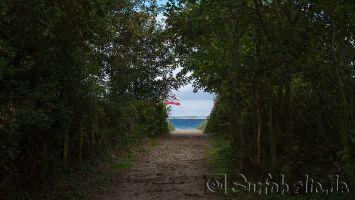 Windsurfen auf der Eckernfoerder Bucht bei Schwedeneck
