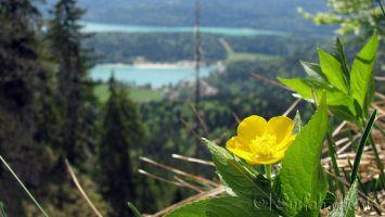 Walchensee - Pause auf dem Weg zum Herzogstand