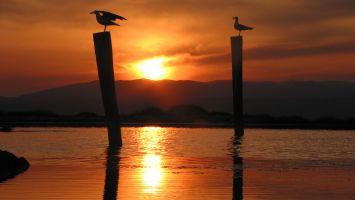 Coucher de soleil à l-Ile des Pêcheurs