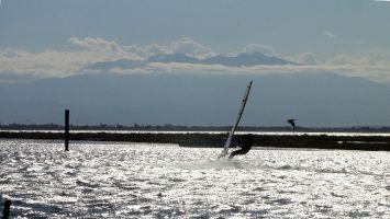 Etang de Leucate, Windsurfer im Speedkanal zwischen Ile des Pêcheurs und Cap Coudalère