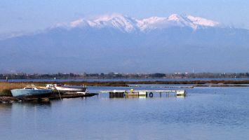 Leucate, Ile des Pêcheurs April 2012, le Canigou