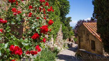Chateau de Castelnou, Südfrankreich, Roussillion