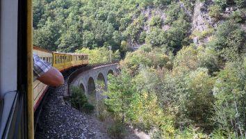 Le petit traine jaune, tren groc