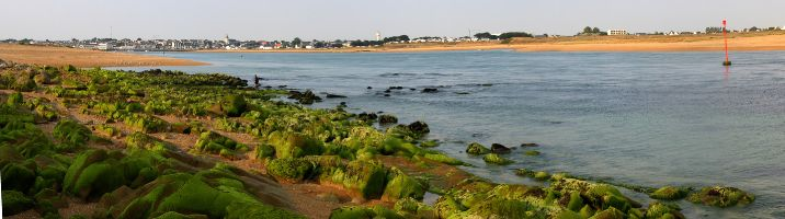 Flussmündung d Etel bei Niedrigwasser, Quiberon, Morbihan, Bretagne, Frankreich