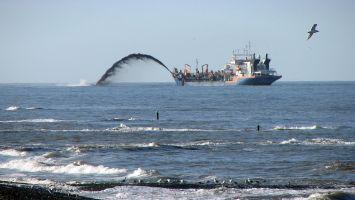Deichsicherung, Sandschiff vor der Küste von Petten in Nordholland