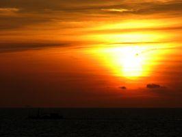 Krabbenkutter im Sonnenuntergang, Petten, Nordsee, Holland