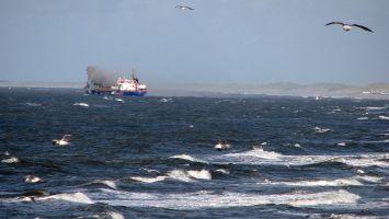 Nordsee bei Petten, Sandschiff zur Sicherung der Deiche