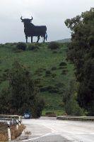 El Torro (der Stier) - das Wahrzeichen Andalusiens, Tarifa, Spanien