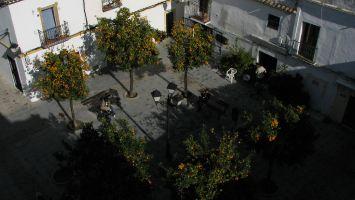Orangenbäume in der Altstadt von Tarifa