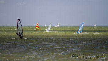 Makkum Windsurfen