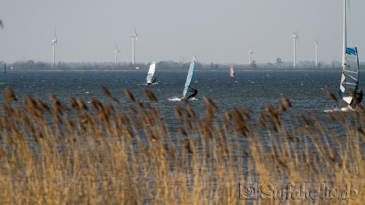 Windsurfen in Strand Horst, Harderwijk, April 2014